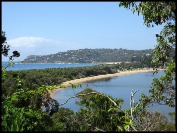 Barrenjoey Beach from Access Track
